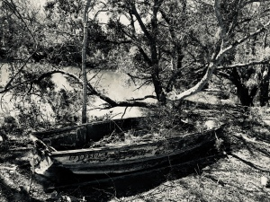 Abandoned Boat St Helena Gay Fish Company